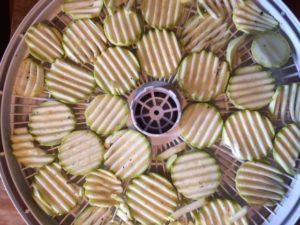 чипсы из кабачков в сушилке