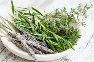 Какое сырье лучше использовать для настойки, свежее или сухое?