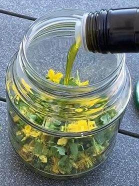 Залить растение маслом