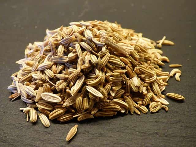семена фенхеля от тошноты