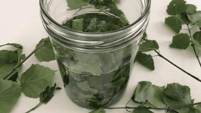 Березовые листья с маслом